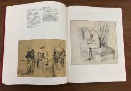 """Livro """" O Desenho- de Altamira a Picasso"""""""