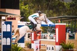 Equitação Clássica