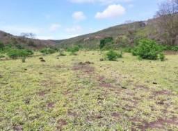 Fazenda em Minas Gerais 398 hectares