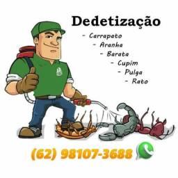 Título do anúncio: Dedetização Para Pombos Formigas e Tranças