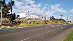Terreno para alugar com 2 dormitórios em Jardim carvalho, Ponta grossa cod:2361