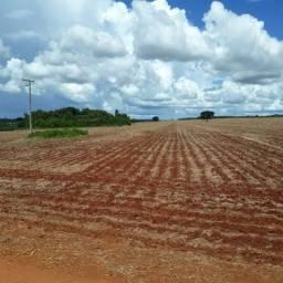 [Abaixo o Preço] - Fazenda em Buriti Alegre