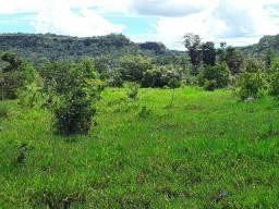 .  Fazenda 70 Alqueires em Campos lindos Tocantins