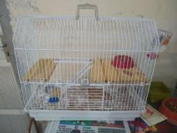 Vendo gaiola+ duas gerbil fêmeas
