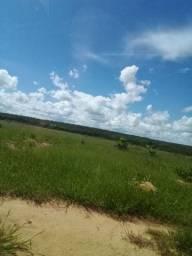 2600 hectares Dupla Aptidão
