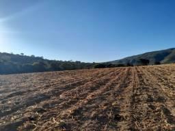 Título do anúncio: Fazenda de 86 Hectares Onça Pitangui