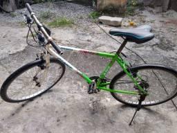 Bicicleta Giant Panda Aro 26