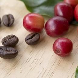 Café 100% arábica do sul de minas gerais