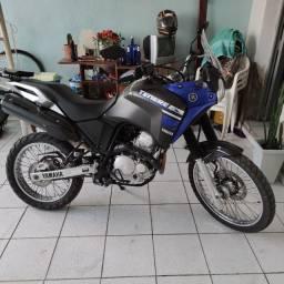 Tenere 250 2019