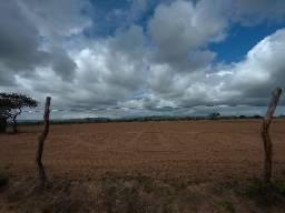 Fazenda de 736 Tarefas em Tobias Barreto Se