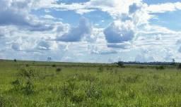 Vende-se excelente fazenda de 450 alqueires em Canabrava do Norte - MT