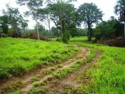 Fazenda de 263 Alq em Duere do Tocantins