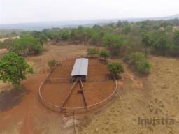 Fazenda de 288 Alqueires em Sta Tereza do Tocantins
