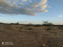 Excelente área para plantio, 4 hectare terra
