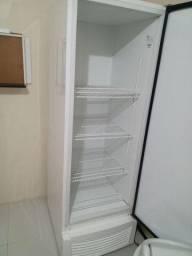 Freezer Vertical Fricon