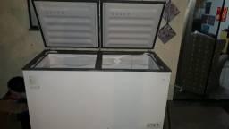 Freezer Grande. 500 lt