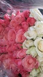Flores naturais .direto da estufa