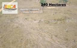 Fazenda com 240 Hectares à venda em Canutama/AM-Cód. FA0136
