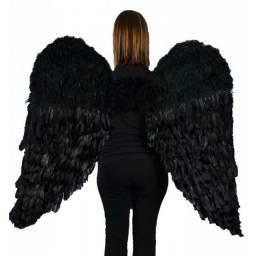 Asas de Anjo Negro