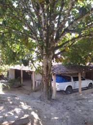 Sítio com 3 hectares em Gravatá