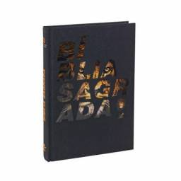 Bíblia Sagrada   NAA   Capa Dura   Detalhe Leão