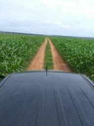 Vendo uma fazenda 200 alqueires em Miracema Tocantins