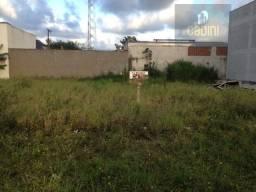 Terreno residencial à venda, Nova Esperança, Balneário Camboriú.