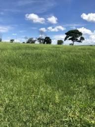 Fazenda em Jauru MT