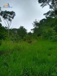 Chácara com 1 dormitório à venda, 5000 m² por R$ 110.000 - Zona Rural - Anápolis/GO