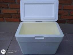 Kit Caixa de Isopor 21 litros + 2 Gelo Gel