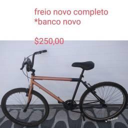 Bicicletaria Luiz .. Aparti de 170