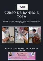 Curso de Banho e Tosa em Caxias