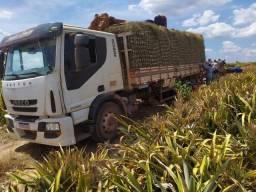 Título do anúncio: Caminhao truck tector 240e28 iveco 2013/2014