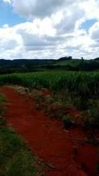 Procuro fazenda a venda campo Mourão