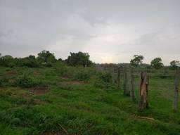 Fazenda 546 Ha, R$ 17.000,00 por ha