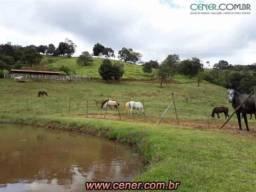 1986/Fazenda Haras de 17 ha com estrutura espetacular e muita beleza e bem localizada