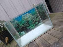 Vendo aquário porte médio