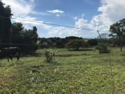 Fazenda próximo Uberlândia