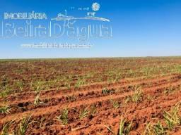 Fazenda 16,5 Alqueirao Plantada em Cana Arrendada para Usina