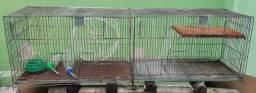 Gaiola para porquinho da índia ou pássaro