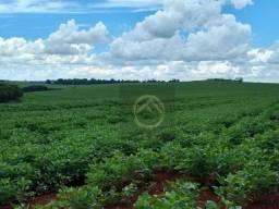 Fazenda à venda, 1694000 m² por R$ 10.600.000 - Centro - Francisco Beltrão/PR