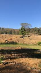 Vendo Sitio em Juruaia (Minas)