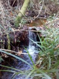 Fazendinha Barata Com Nascente Própria de Água