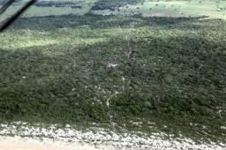 Terreno em Guriri- 407 385 m2 - 11 km ao sul de guriri- na estrada de Barra Nova