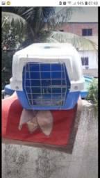 Casa de transporte do seu pet
