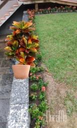 Jardinagem e criação jardim