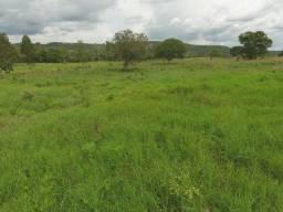 .  Fazenda 88 Alqueires em barrolândia Tocantins