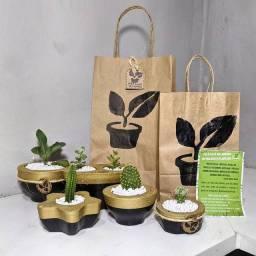 Vaso decorado presente plantado