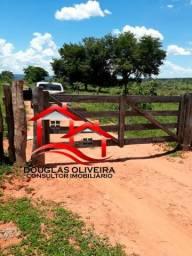Fazenda 193 alqueires município de Palestina Goiás