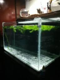 Produzimos seu aquário